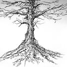 Tree sketch by LAURANCE RICHARDSON