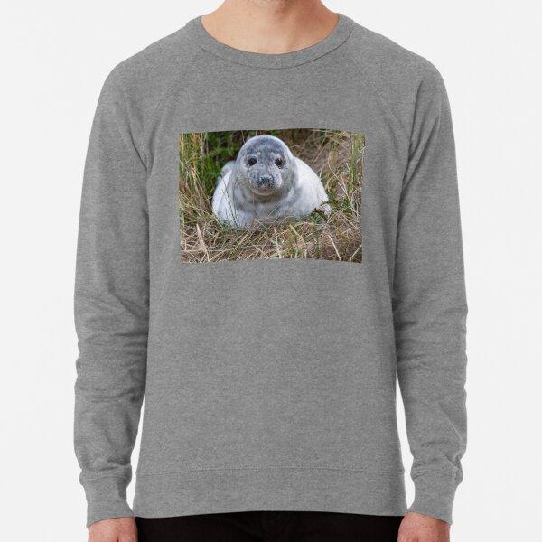 Grey Seal Pup Lightweight Sweatshirt
