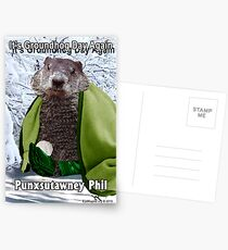 It's Groundhog Day Again Postcards