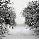 Snow Landscape 02 by Jason Moore