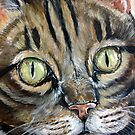 tabby cat by Lynsey Cleaver