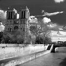 River of Notre Dame by Kingston  Liu