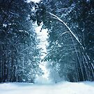«Paisaje de invierno» de baxiaart