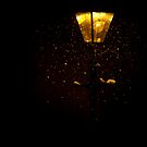Midnight snow by Katseyes