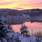 Pink view in december by Annbjørg  Næss