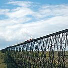Train on the Bridge by Alyce Taylor