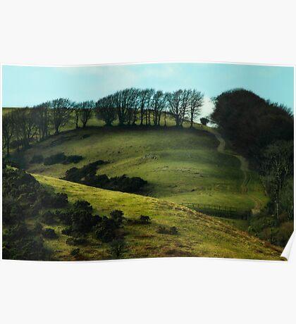 Meldon, Okehampton,Devon Poster