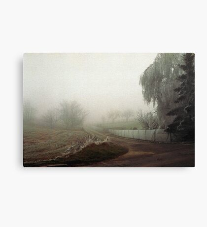 Winter in Tervuren Canvas Print