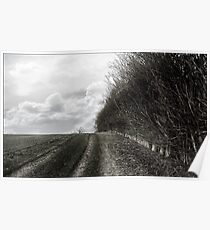 Hitchin Hedgerow Poster
