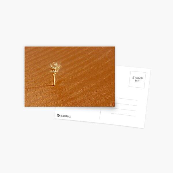 bone-white dead Postcard