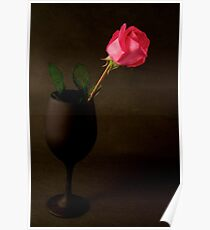 Pink Rose on a black back ground Poster
