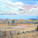Blayney [NSW] Australia ] Wind Farm by Virginia McGowan