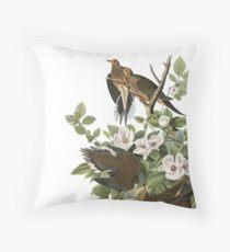 Mourning Dove - John James Audubon Throw Pillow