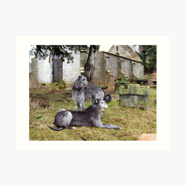 deerhound song Art Print