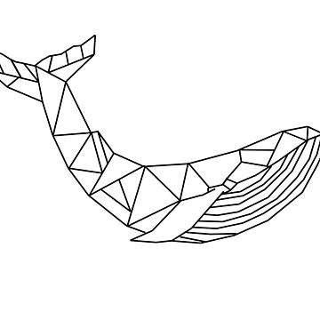 Whale Line Drawing by MrPeterRossiter