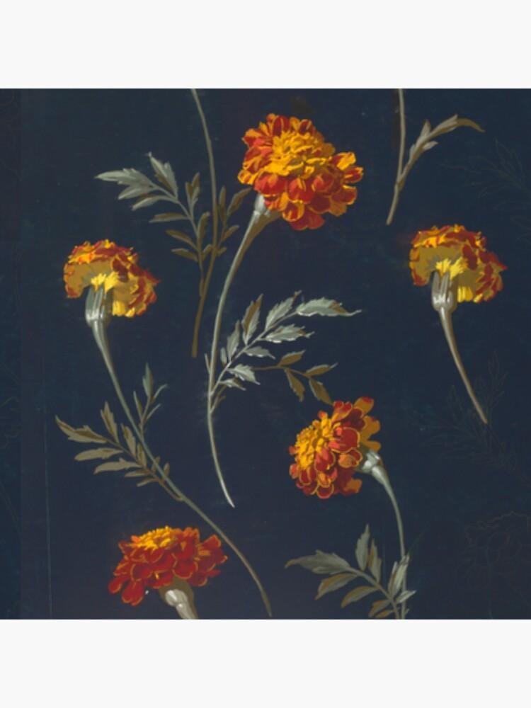 Vintage Marigolds by bluespecsstudio