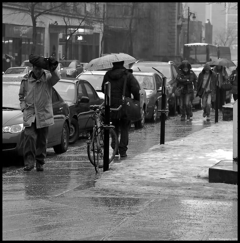 Rainy Daze by Mark David Barrington
