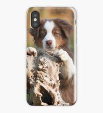 Curious Aussie Puppy iPhone Case