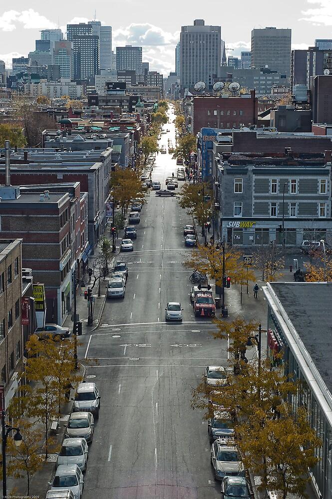 Montreal Street by Mark David Barrington