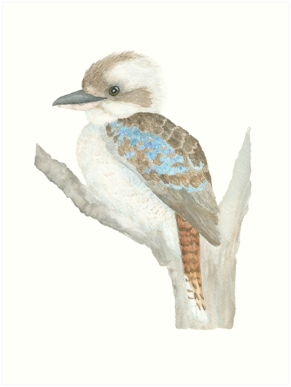 Art print POSTER Blue-Winged Kookaburra