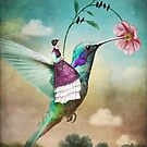 The Hummingbird (6 of wands) by Catrin Welz-Stein