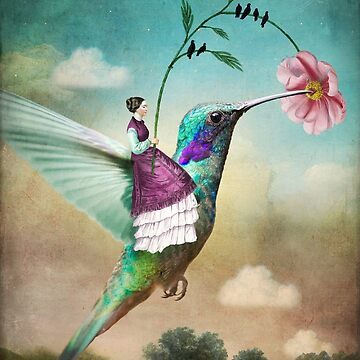 The Hummingbird (6 of wands) by catrinarno