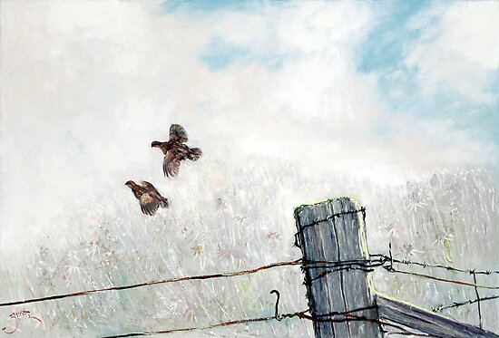 Quail Over Barbed Wire by Tanya Zaadstra