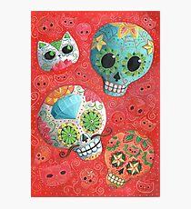 Colourful Sugar Skulls Photographic Print