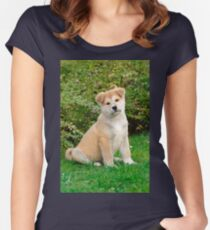Akita puppy Women's Fitted Scoop T-Shirt