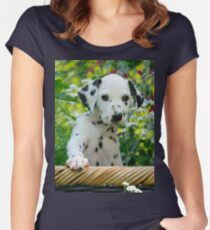 Hey, I`m a Dalmatian puppy Women's Fitted Scoop T-Shirt