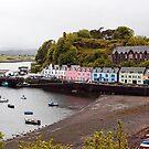 Portree Harbour by Lynne Morris