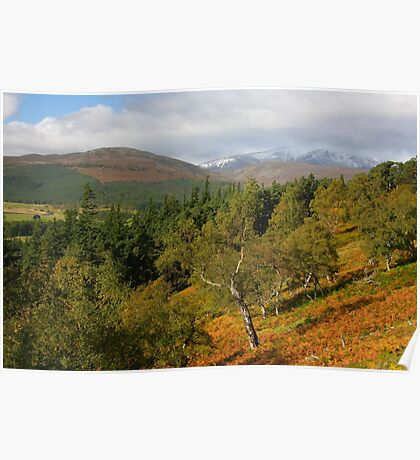 Autumn colours of Royal Deeside Poster