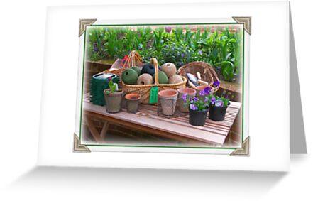 Garden Shop by ColinBoylett