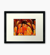 Orange Framed Print
