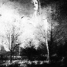 Dwelling Place by Nikki Smith