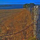 Kings Fence HDR by Ben Mattner