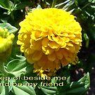 Be my friend by Ana Belaj