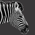 Black & White or White & Black? Etosha NP Namibia by Beth  Wode