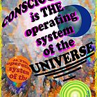 THE OPERATING SYSTEM by QuantumShift