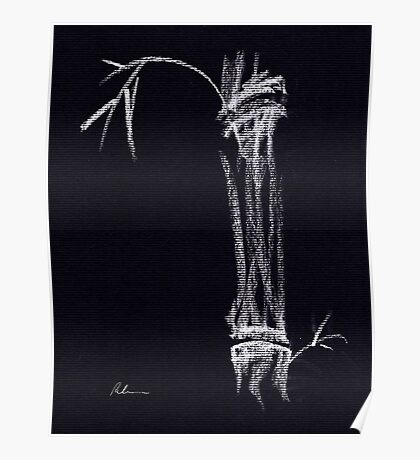'Apparition'  ghostly bamboo drawing in chalk pencil Poster