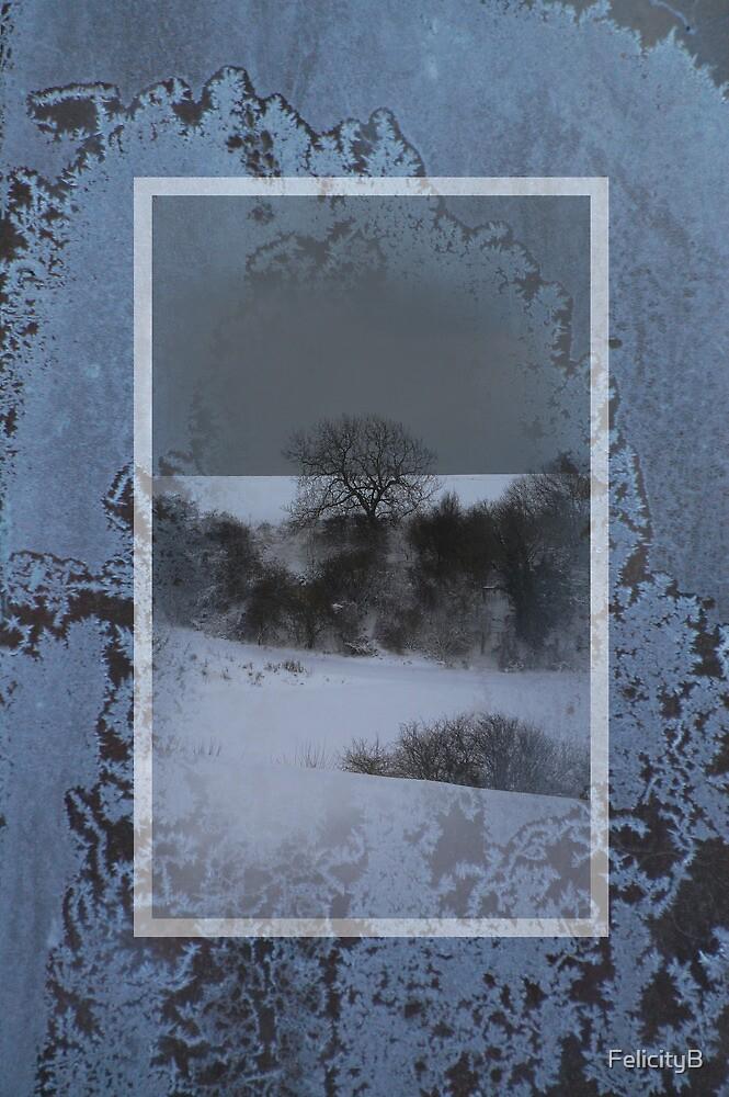 Encased in Frost by FelicityB