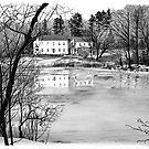 Coles Pond - West Boxford, Massachusetts by Susana Weber