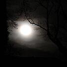 Wolf Moon  by Steiner62