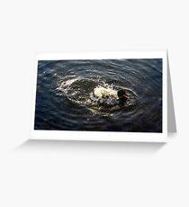 splashing duck Greeting Card
