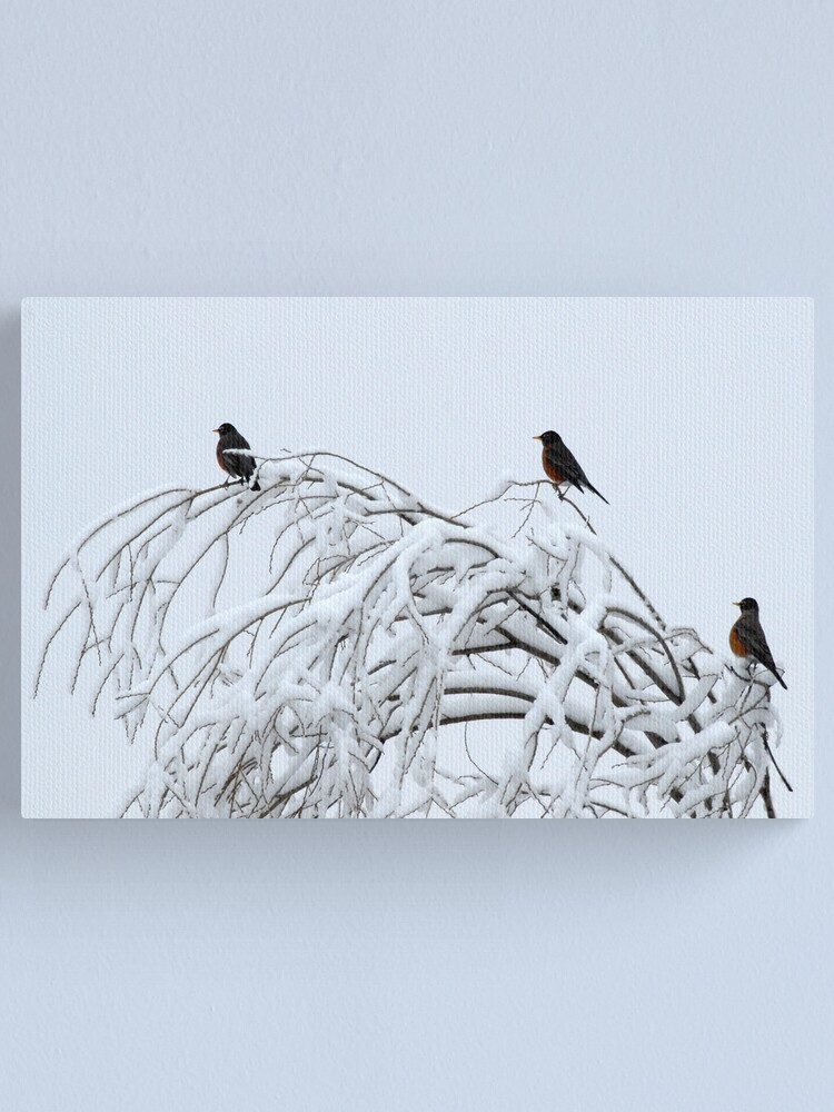 Alternate view of Three of a Kind Canvas Print