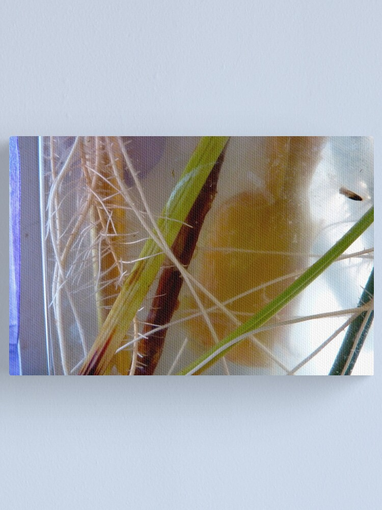 Alternate view of Rooting Canvas Print