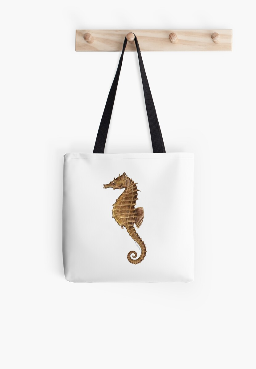 Northern Seahorse (Hippocampus hudsonius)  by Tamara Clark