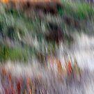 Autumn Grasses by Lynn Wiles