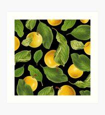 Botanical Vintage Fruit Art Print