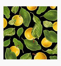 Botanical Vintage Fruit Photographic Print